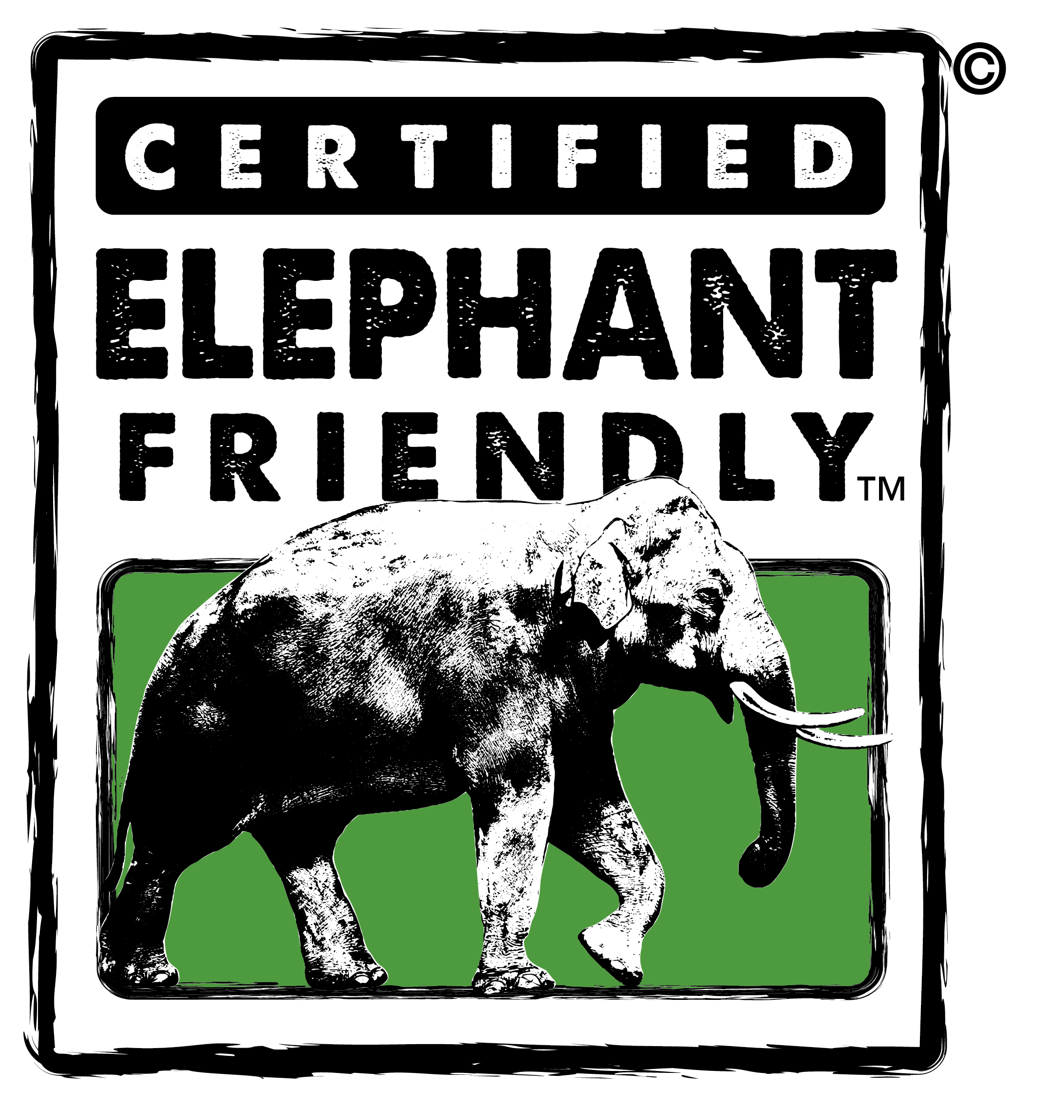 WFEN-Asian-Elephant-Friendly-Rd2_A-copy.png